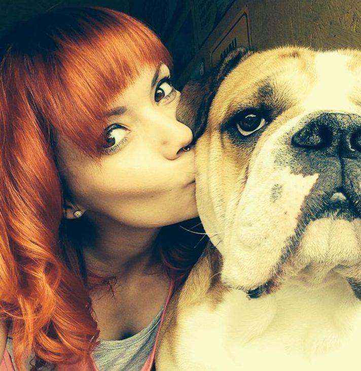Continental Bulldog bekommt einen Kuss