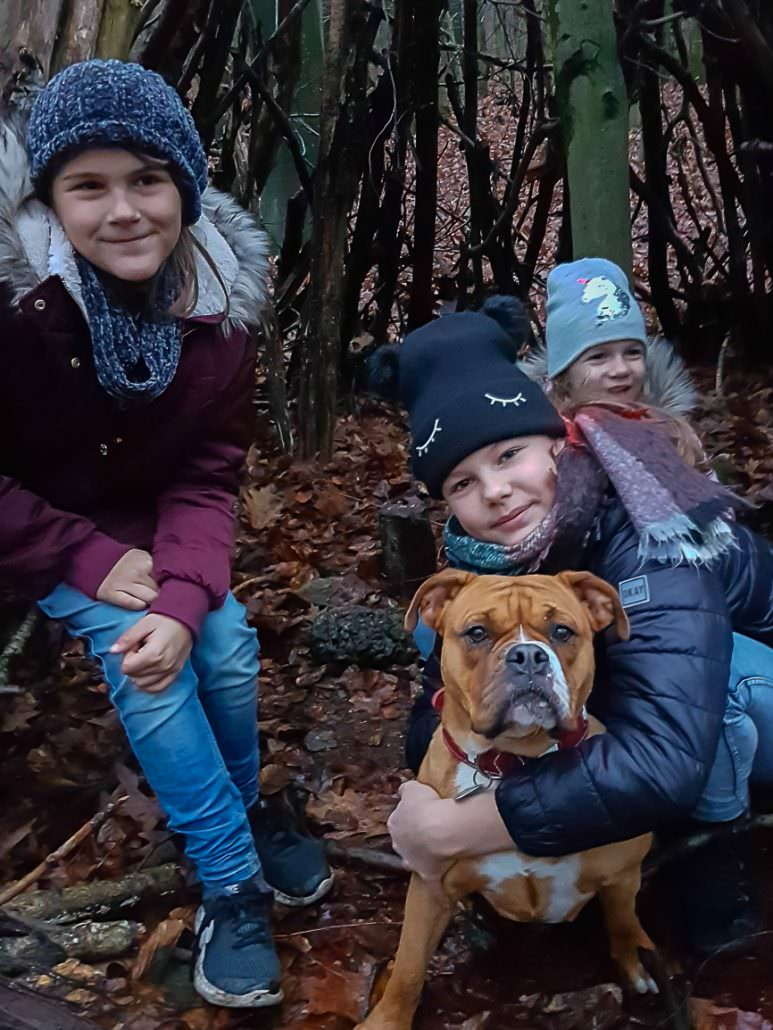Continental Bulldog mit Kindergruppe